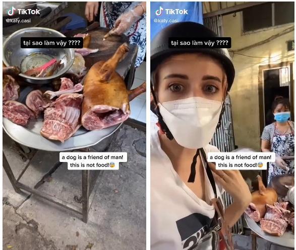 Lên án chuyện ăn thịt chó ở Việt Nam, cô gái bị công kích đến mức phải bỏ về nước?-1