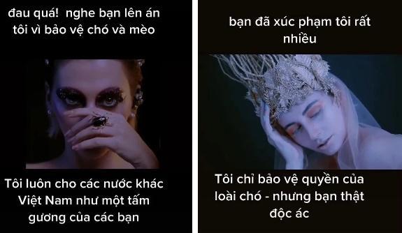 Lên án chuyện ăn thịt chó ở Việt Nam, cô gái bị công kích đến mức phải bỏ về nước?-2