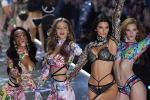 Vì sao Victoria's Secret thất bại trước hình thể nóng bỏng của phụ nữ?