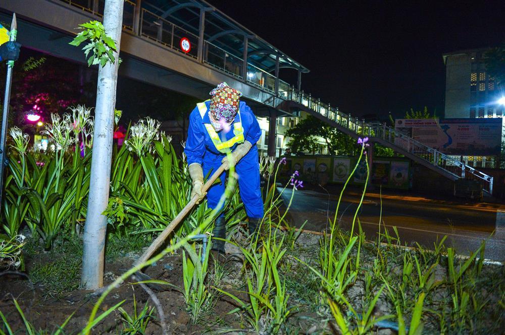 Hàng chục công nhân xuyên đêm di chuyển hàng cây phong lá đỏ trên đường Trần Duy Hưng-5