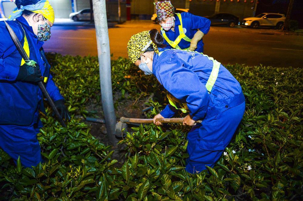 Hàng chục công nhân xuyên đêm di chuyển hàng cây phong lá đỏ trên đường Trần Duy Hưng-6