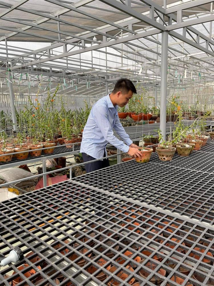 8X nghèo sưu tầm, nhân giống được vườn lan quý 450m2 ở Phú Thọ-2