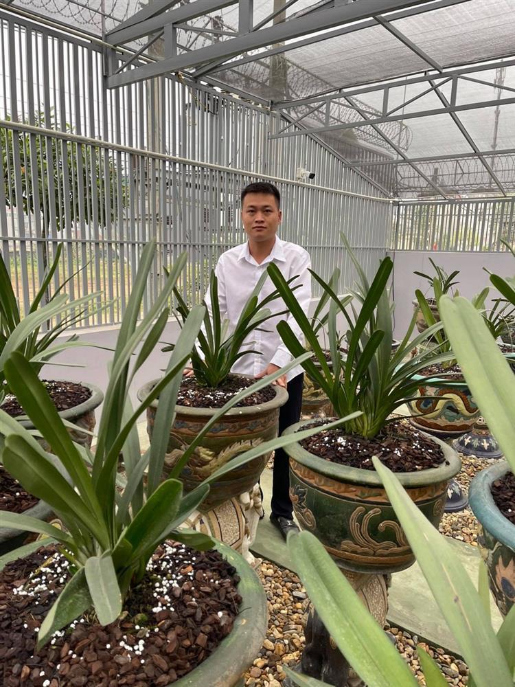 8X nghèo sưu tầm, nhân giống được vườn lan quý 450m2 ở Phú Thọ-4