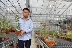 8X nghèo sưu tầm, nhân giống được vườn lan quý 450m2 ở Phú Thọ