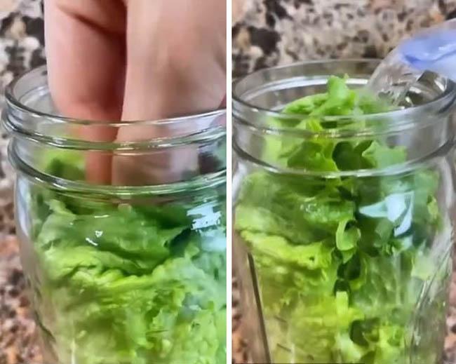 Blogger ẩm thực người Mỹ chia sẻ bí quyết giữ xà lách tươi xanh 1 tháng-2