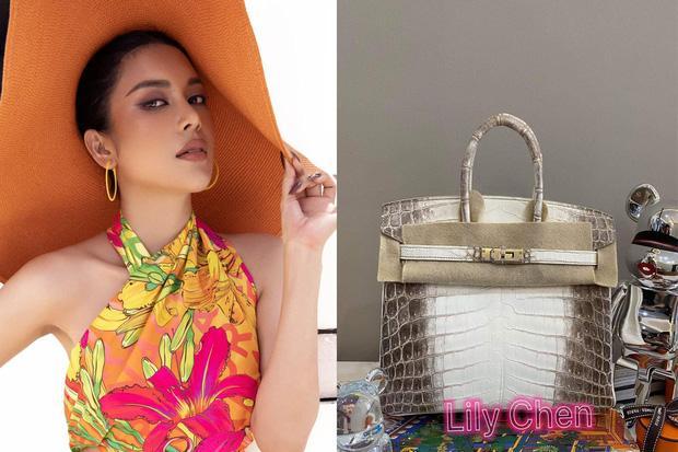 Ngọc Trinh - Lily Chen đụng từ siêu xe đến túi Hermès, còn bị nghi chung bồ-2
