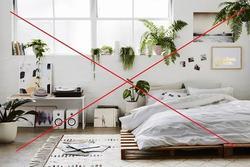 Đầu giường đặt 5 thứ dễ gây đau ốm, hao tài tán của, vợ chồng cãi vã chia ly