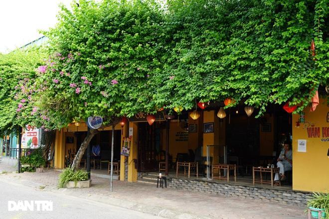 Hàng loạt quán cà phê mở cửa trở lại sau khi TP Hà Nội nới lỏng lệnh cấm-1