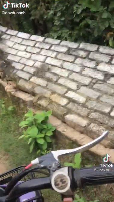 Ăn trộm vải đổ tường hàng xóm, thái độ cợt nhả của cô gái gây phẫn nộ-2