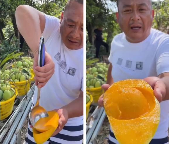 Bất ngờ trước cách nông dân Trung Quốc vận chuyển xoài chẳng cần tốn sức-2