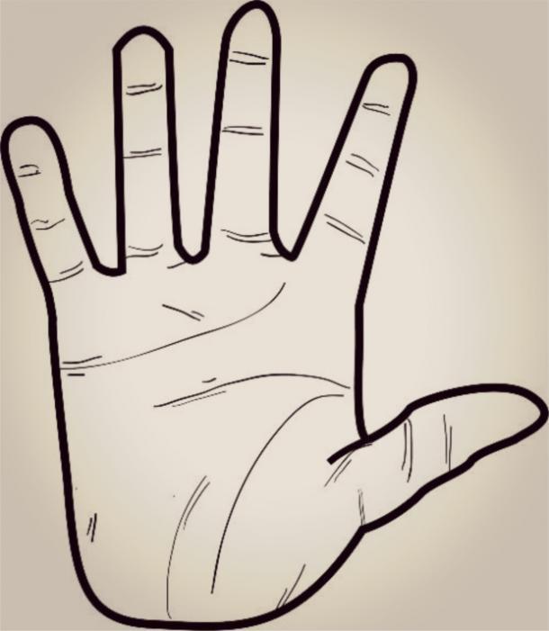 Nhìn hình dáng bàn tay, đoán điểm mạnh, điểm yếu của từng người-2