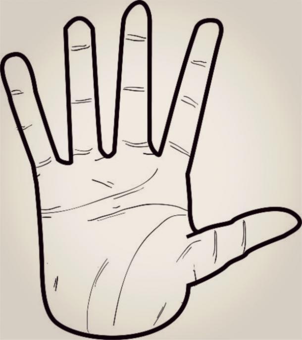 Nhìn hình dáng bàn tay, đoán điểm mạnh, điểm yếu của từng người-3