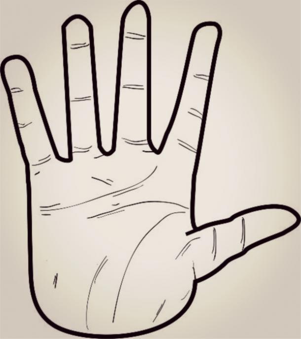 Nhìn hình dáng bàn tay, đoán điểm mạnh, điểm yếu của từng người-4