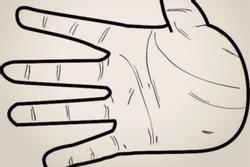Nhìn hình dáng bàn tay, đoán điểm mạnh, điểm yếu của từng người