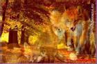Chọn một con cáo tiết lộ bạn có phải là kẻ 'mưu hèn kế bẩn'?