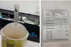Cô gái tố quán trà sữa bán đồ uống có côn trùng, không ngờ bị lật ngược 'thuyết âm mưu'