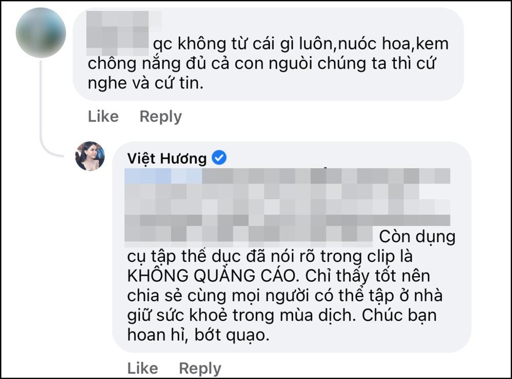 Việt Hương bị chỉ trích quảng cáo không từ thứ gì?-3