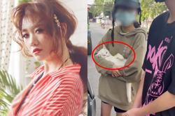 Hari Won viết tút 'thương con mèo' liền bị hỏi: 'Người dân là con gì?'