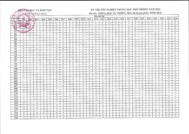 Đáp án tất cả các môn trắc nghiệm thi tốt nghiệp THPT của Bộ GD&ĐT-5