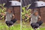 Tạ Đình Phong bị chỉ trích vì lấy ô che mưa cho rau