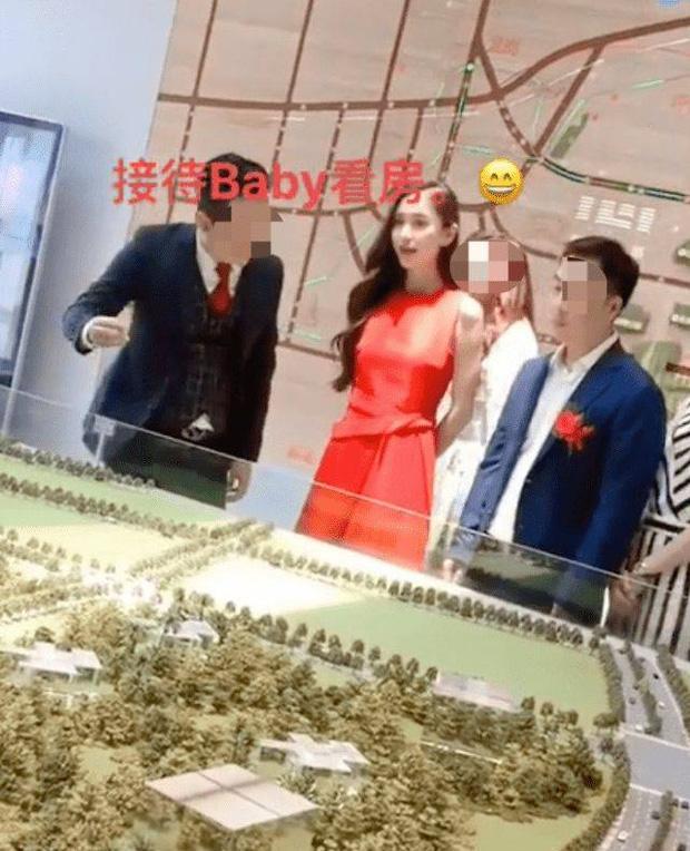 Angela Baby lẻ bóng đi mua nhà, Huỳnh Hiểu Minh về quê vắng vợ con-1