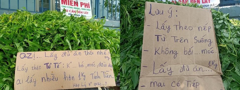 Anh Minh bán rau từ chối nhận tiền ủng hộ-3