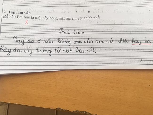 Nhóc lớp 3 làm văn tả cây cối, mẹ đọc xong chỉ muốn độn thổ-3
