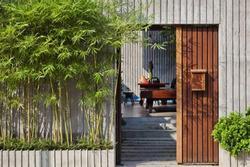 7 loại cây phong thủy trồng trước nhà giúp gia tăng may mắn tài lộc