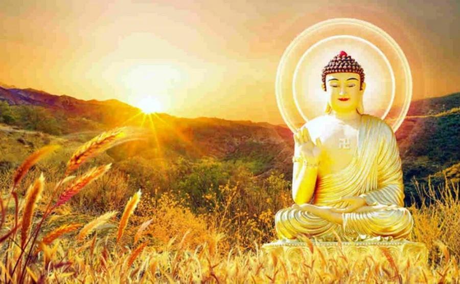 Nếu đang phiền muộn, hãy đọc 5 lời dạy của Phật lấy lại năng lượng-1