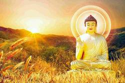 Nếu đang phiền muộn, hãy đọc 5 lời dạy của Phật lấy lại năng lượng