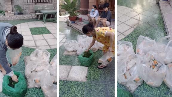 Cô chủ sộp nhất Sài Gòn mùa dịch: Giảm 50% tiền nhà, phát gạo miễn phí-2