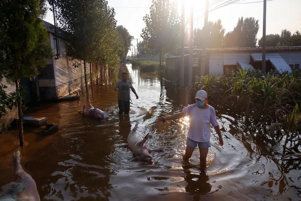 Mưa lũ nuốt chửng nguồn sống, nông dân TQ tuyệt vọng: Bầu trời sụp đổ!-2