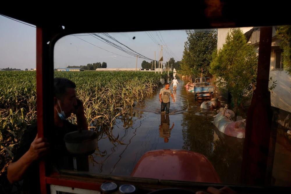 Mưa lũ nuốt chửng nguồn sống, nông dân TQ tuyệt vọng: Bầu trời sụp đổ!-3