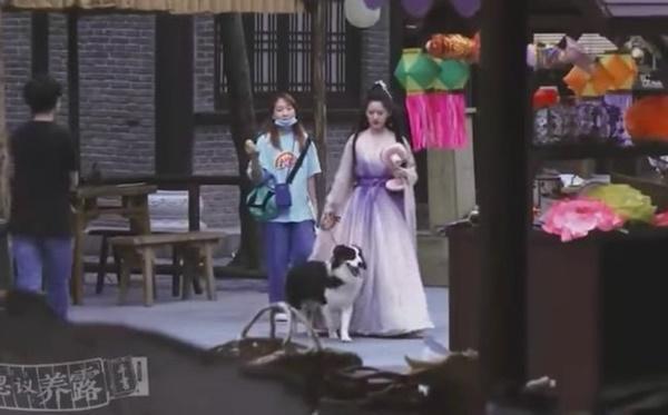 Triệu Lộ Tư dắt chó đi dạo, fan khen không ngớt nhan sắc đời thực-5