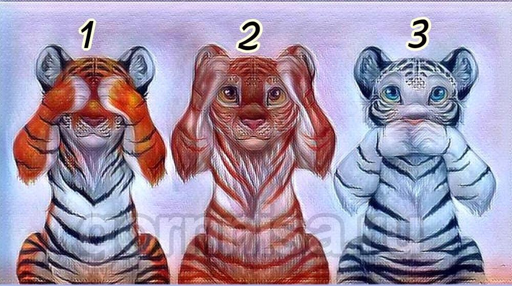 Con hổ ấn tượng nhất sẽ giúp bạn nhận diện kẻ nào đang lươn lẹo-1