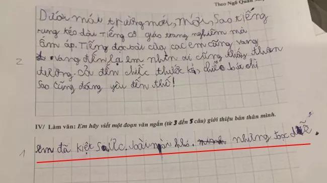 Yêu cầu viết gương sáng nghìn việc tốt, nhóc tiểu học bẻ lái gắt-2