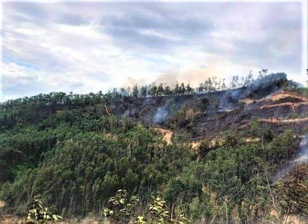 Người đàn ông tử vong thương tâm trong lúc tham gia chữa cháy rừng-1