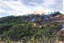 Người đàn ông tử vong thương tâm trong lúc tham gia chữa cháy rừng