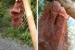 Đặc sản rất 'dị' ở Việt Nam: Thịt bò treo lên cây, đợi kiến bu đầy mới ăn