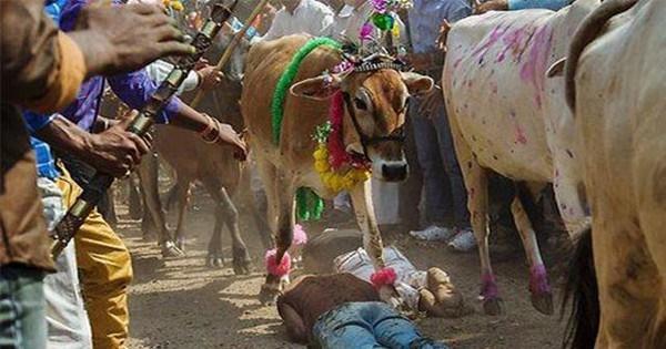 Những lễ hội kỳ quái của người Ấn Độ khiến du khách rợn tóc gáy-4
