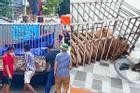 Cận cảnh chuồng trại nuôi nhốt 17 con hổ vừa bị công an triệt phá