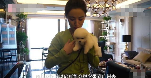 Căn hộ đắt đỏ của nữ hoàng livestream Trung Quốc-4