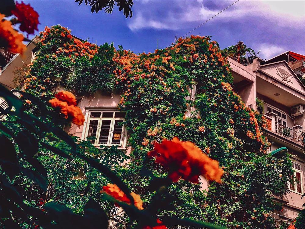 An yên giữa phồn hoa với lâu đài phủ hương của nữ thiết kế thời trang-4