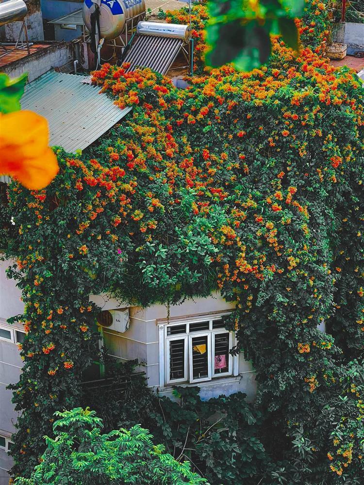 An yên giữa phồn hoa với lâu đài phủ hương của nữ thiết kế thời trang-7