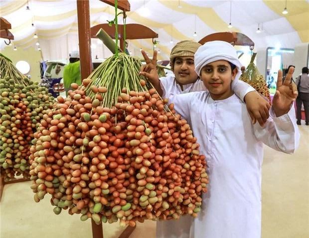 Loại quả giới nhà giàu Dubai quý như vàng, Việt Nam cũng có nơi trồng-2