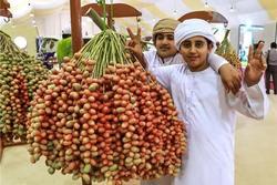 Loại quả giới nhà giàu Dubai quý như vàng, Việt Nam cũng có nơi trồng