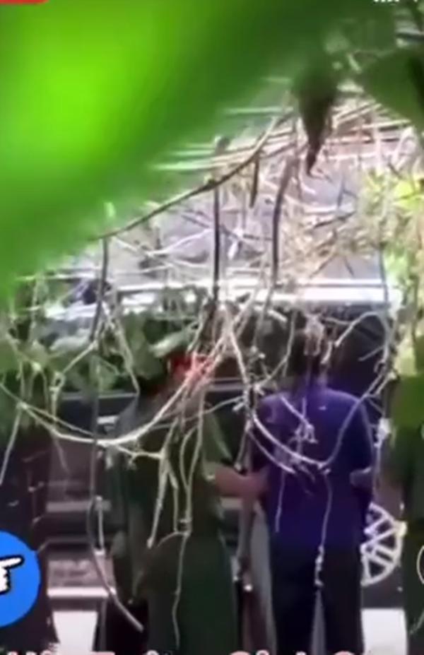 Hương Vị Tình Thân: Lộ cảnh hậu trường ông Sinh bị công an bắt lần 2-2