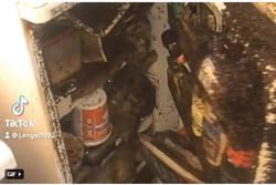 Quán quân 'chiếc tủ lạnh đáng sợ nhất năm', xem clip mà ngạt thở!