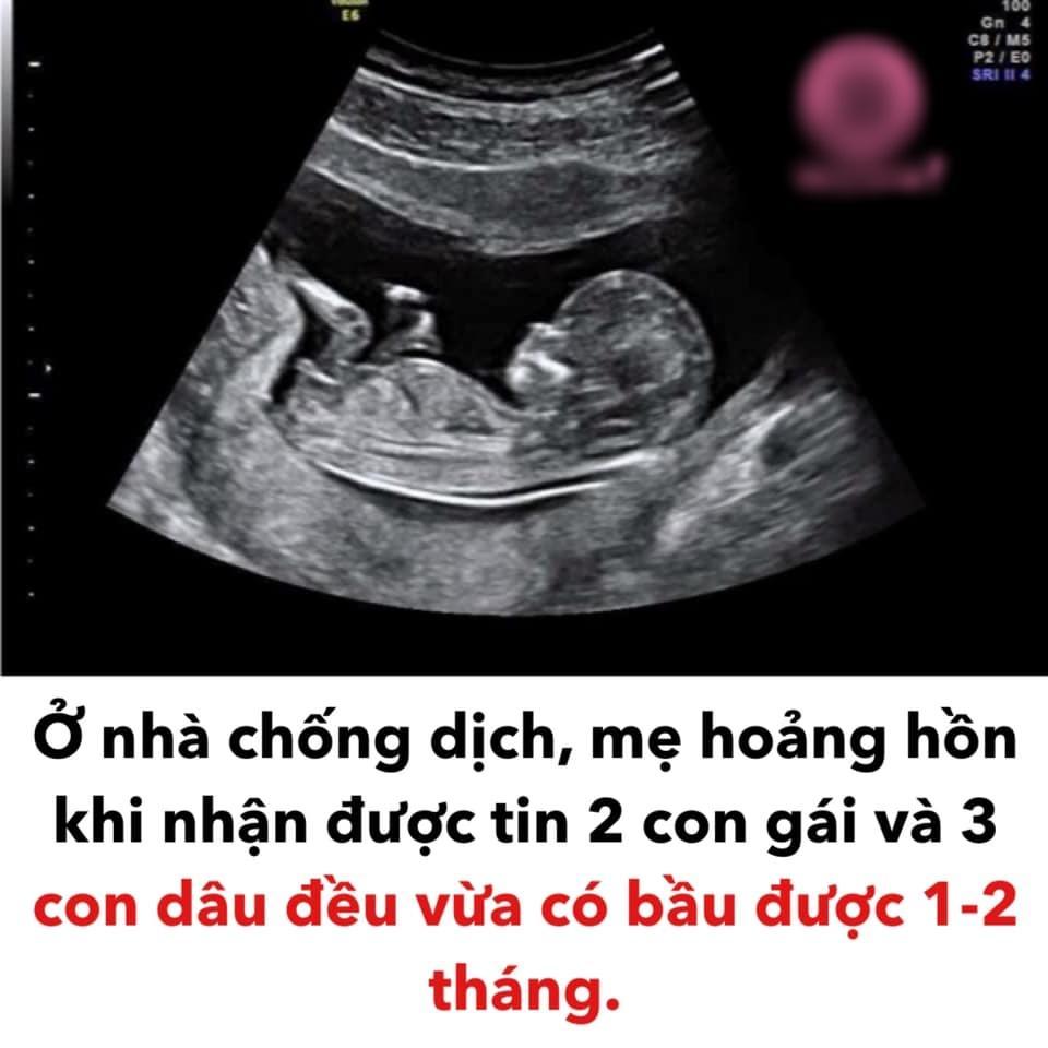 Ở nhà chống dịch, mẹ hoảng hồn khi nghe tin 5 con cùng có bầu-2