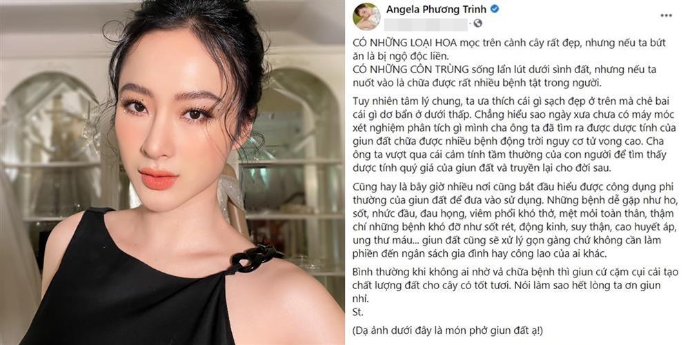 Angela Phương Trinh khoe tô phở giun đất kinh hãi-1